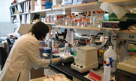 Conosci il sottotipo: la consapevolezza sul linfoma