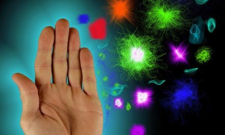 Le resolvine ripristinano l'equilibrio nel sistema immunitario